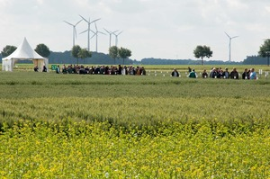 Intensive exchange between farmers and advisors on field day in Borwede, Lower Saxony. Photo: LWK