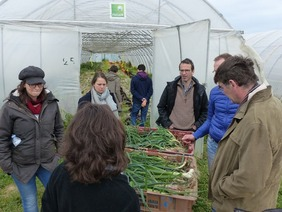 A group of people standing in front of a greenhouse around boxes with scallions